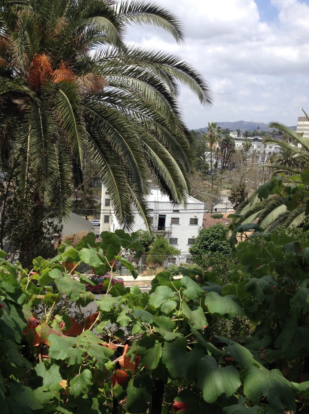 Daytime during stay in Echo park