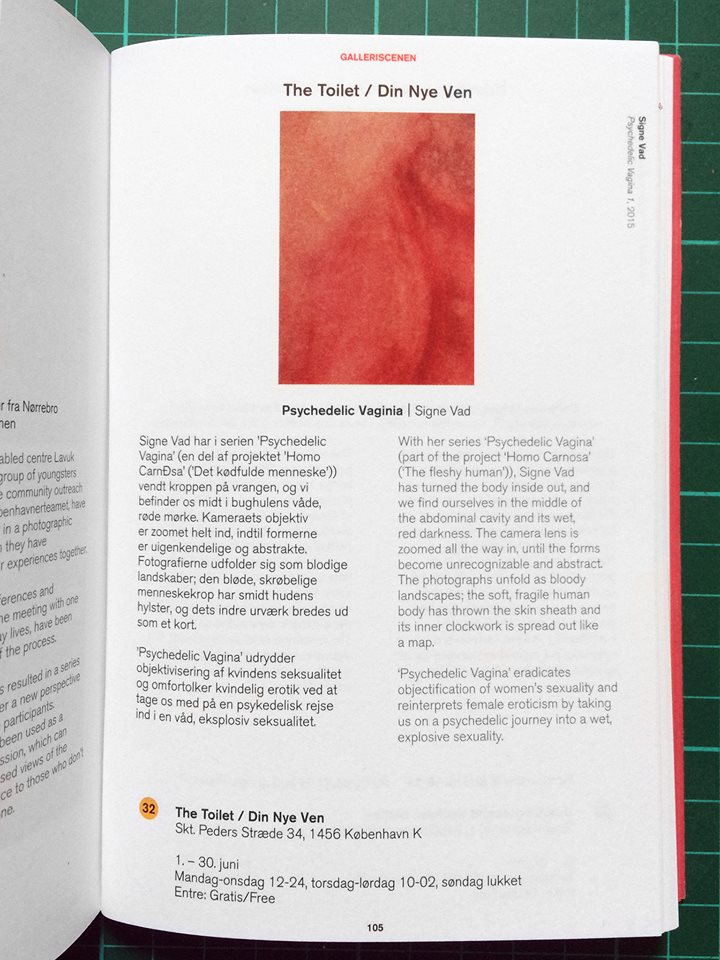 From the catalogue of Copenhagen Photo Festival '17