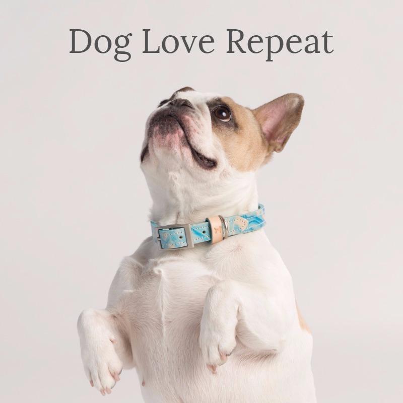 Dec Pop Dog Love (1).jpg