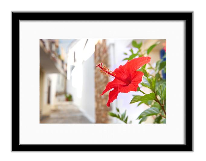 Skopelos, Greece 06