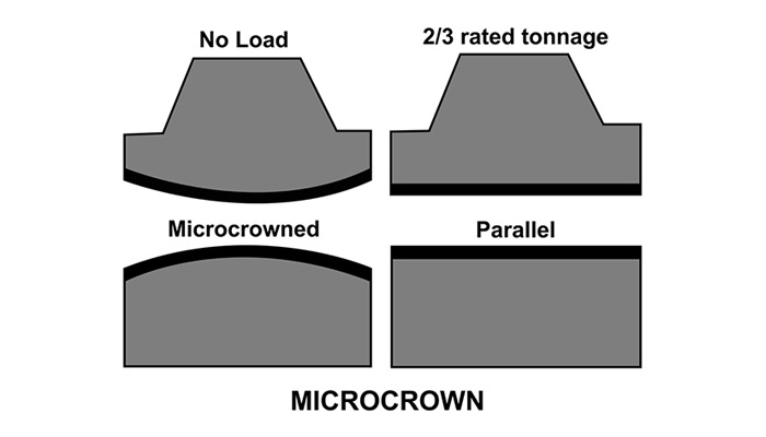 microcrown+illustrationwebsite.jpg