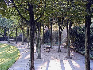 georgetown garden 4.jpg