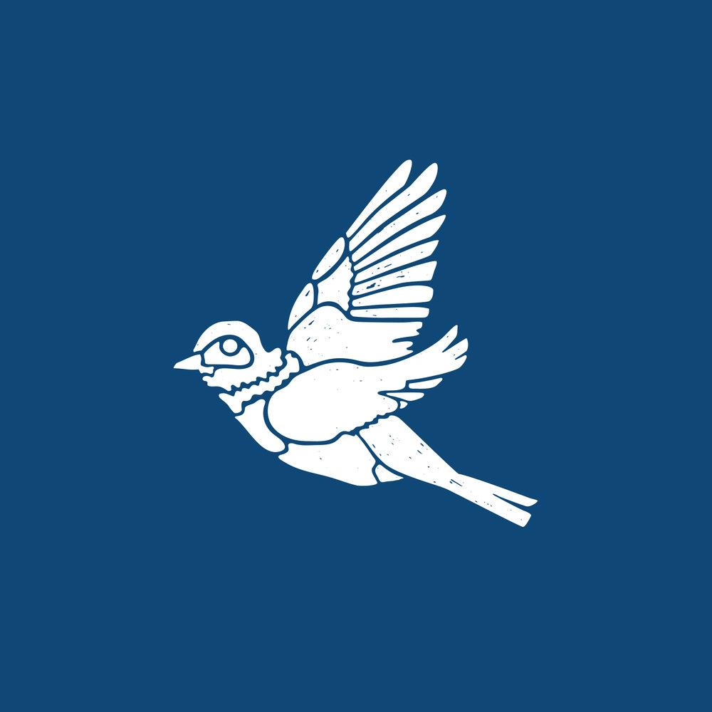 Bluebird_acoustic_final.jpg