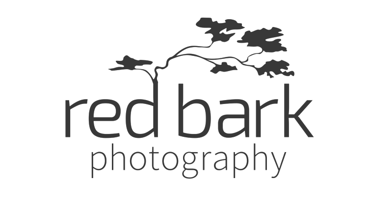 Red Bark Photography
