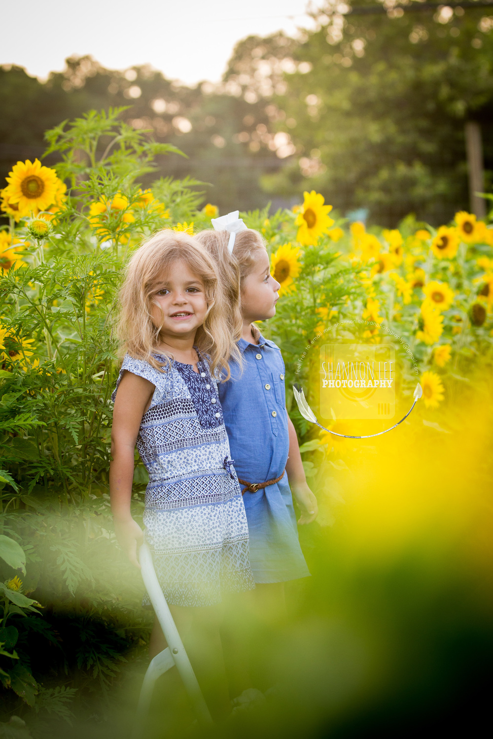 Long Island Sunflower Session Shannon Lee Photography (10).jpg