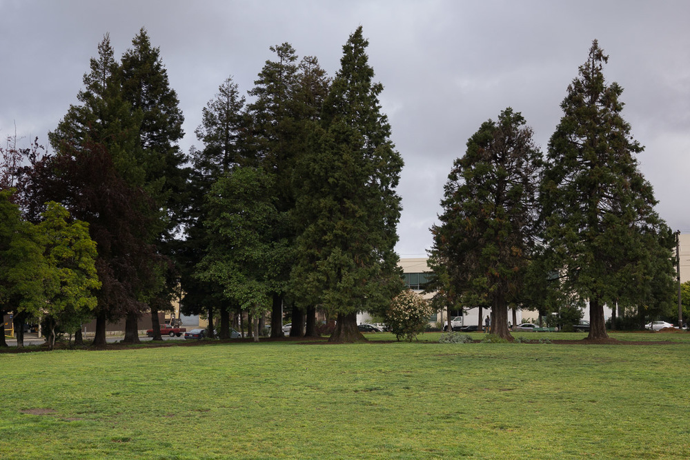 Esprit Park