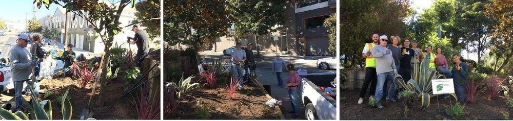 GBD Planting Day at Minnesota Grove