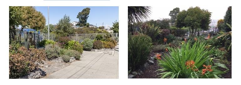 Benches Park                                             Benches Garden