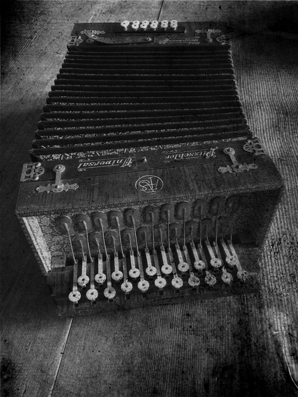 accordianIMG_6947.bw.jpg