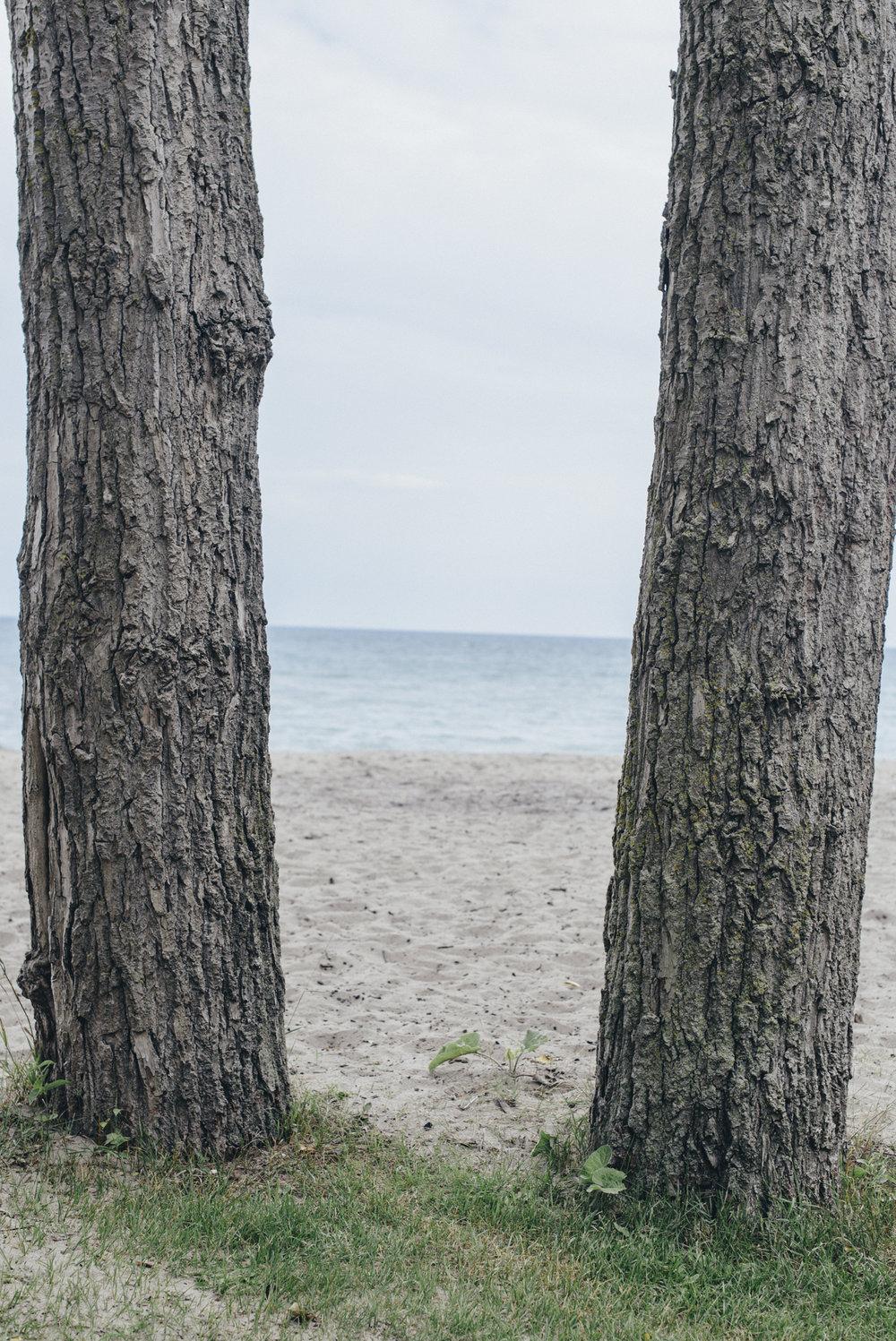180801-Beach+Mirrors-CassRudolph--2.jpg