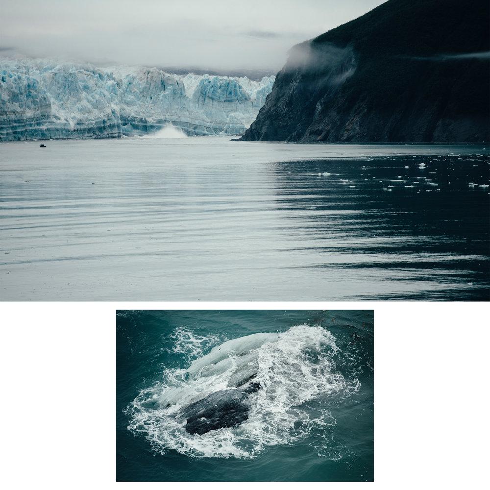 Alaska-Blog1-Panel4.jpg