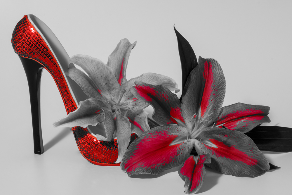 Red Shoe BW flower.jpg