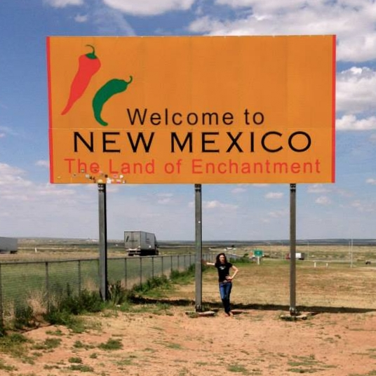 Texas/New Mexico State Line