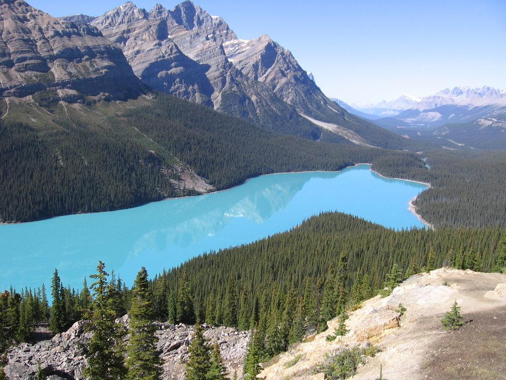 Peyto Lake, Banff, Canada.jpg