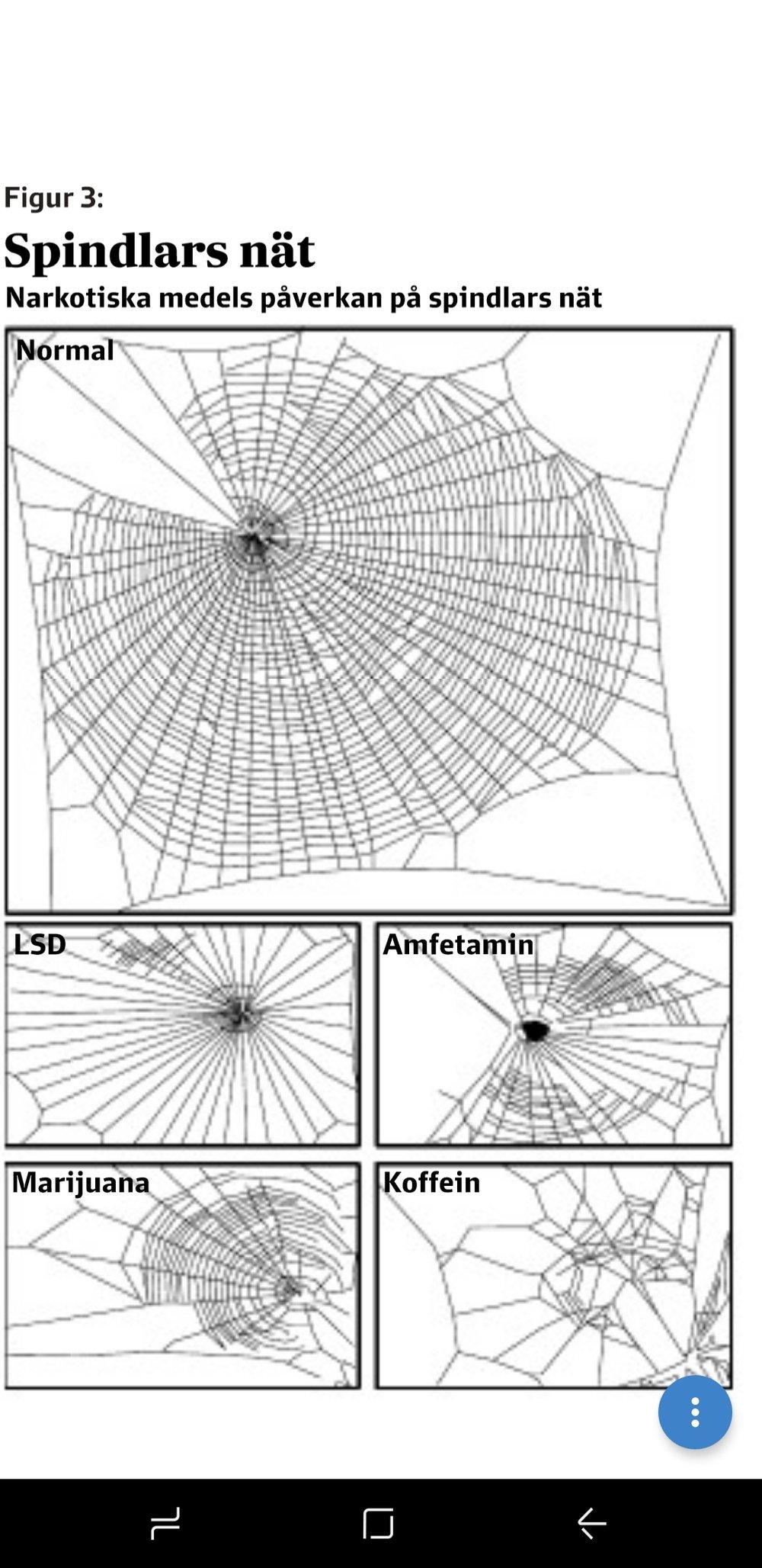 Experiment som gjordes på 1980-talet - visar hur olika kemiska preparat påverkade spindlar förmåga att spinna nät.