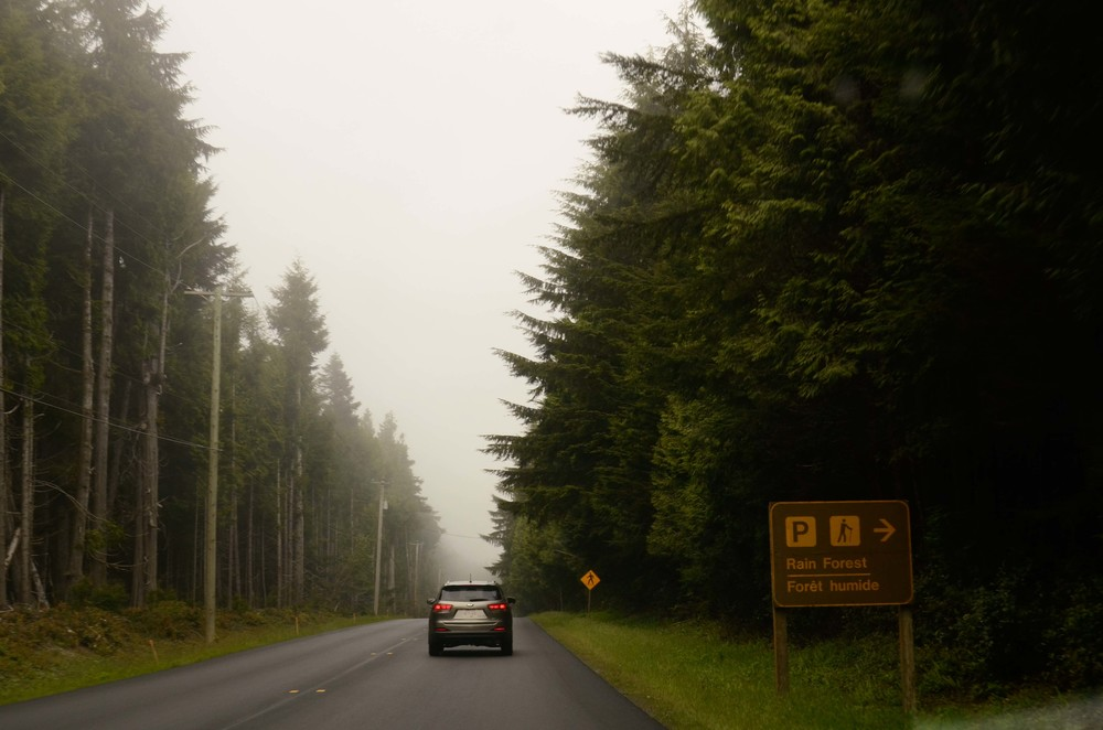road-6929.jpg