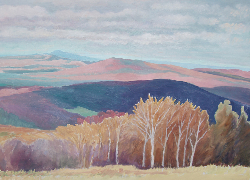 Stratton Mtn I , VT, oil on Board, 24 x 16 inches