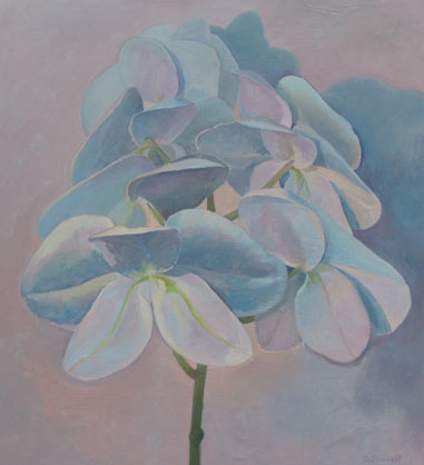 Wild Orchid, Back View , oil on Board, 15 x 17 inches