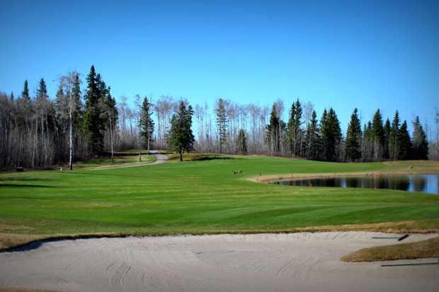Golf 1.jpg