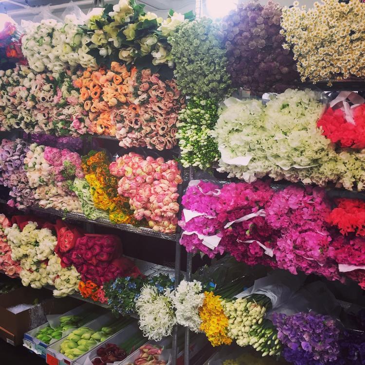 Gge wholesale flowers follow our instagram feed mightylinksfo