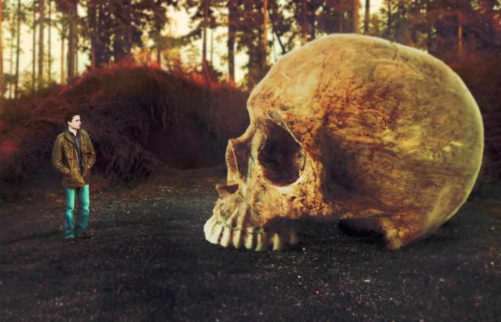Skull copy4MEG.jpg