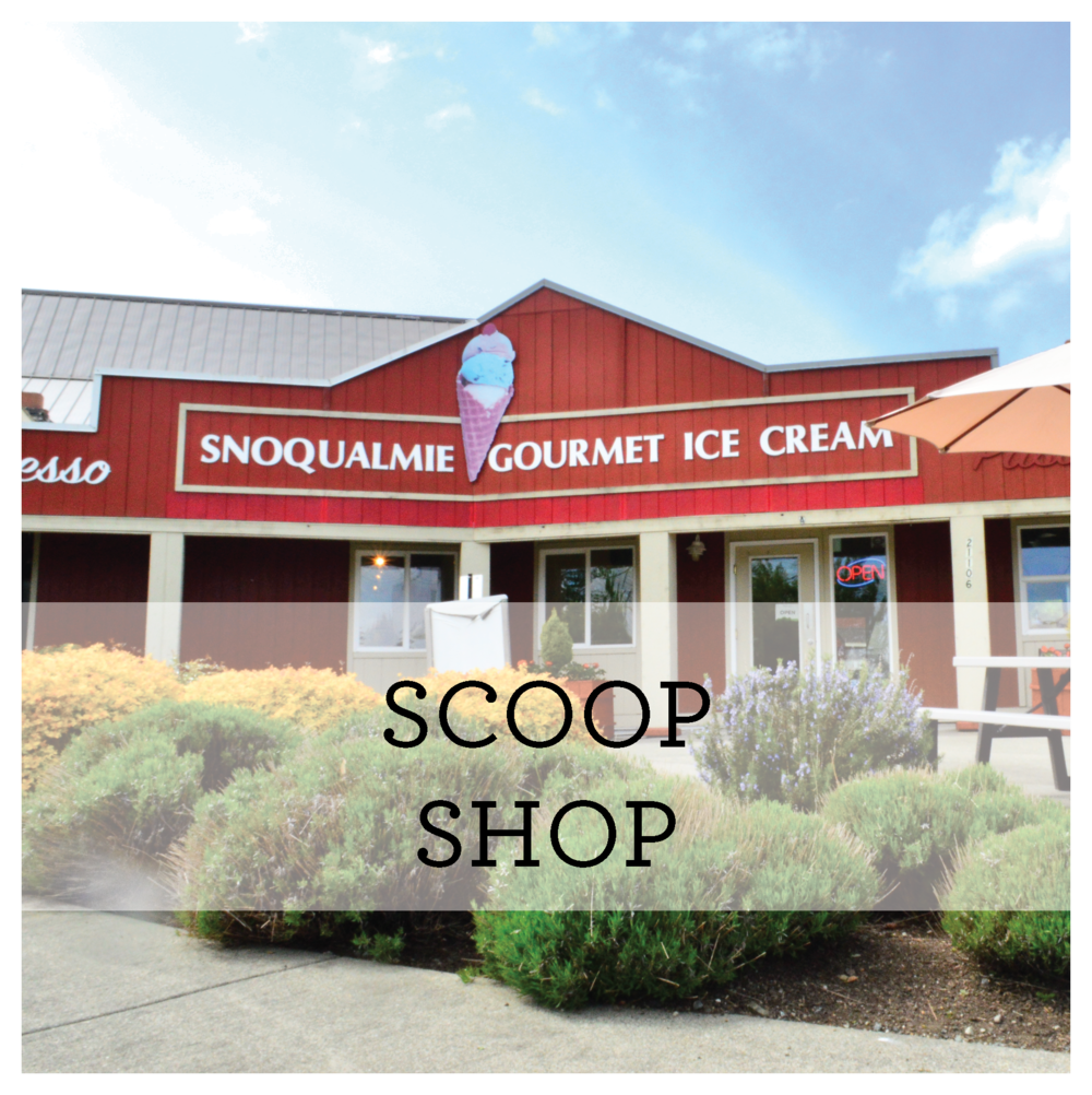 WEBSITE BLOCKS- Scoop Shop-08.png
