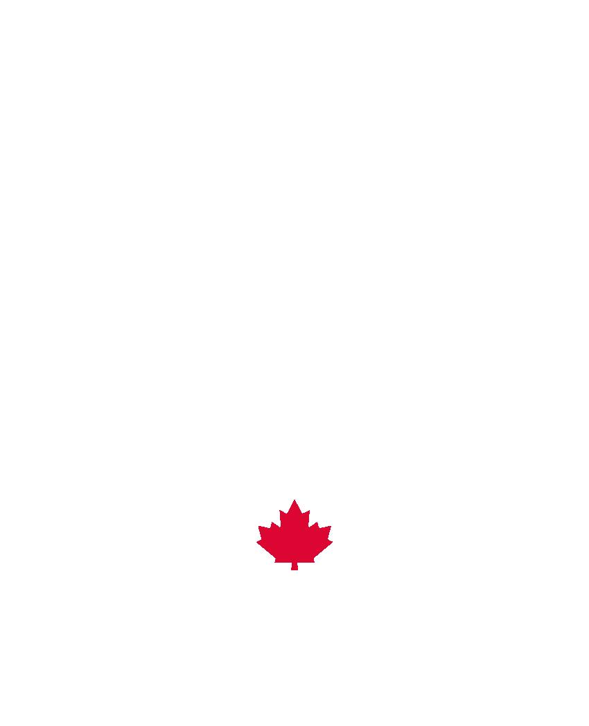 maximizar globo Becks  CrossFit Saskatoon & CrossFit Gym | Reebok CrossFit 306