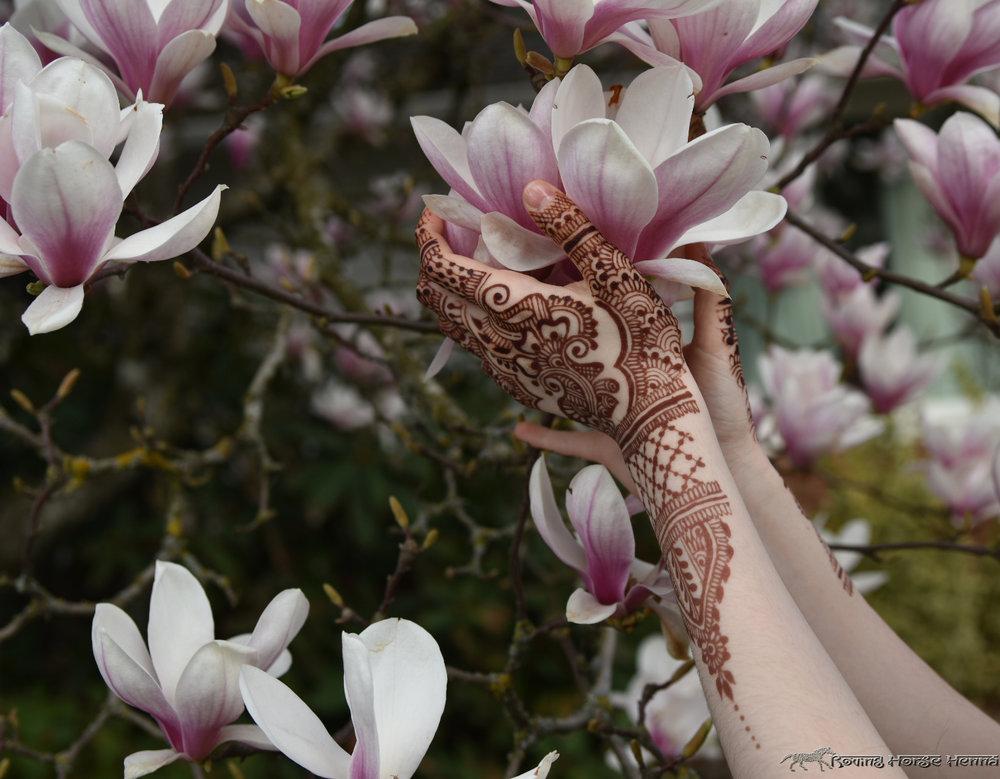 magnoliahands.jpg