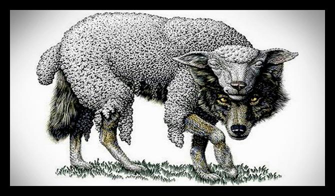 Wolf in Sheeps Clothing W&Co.jpg