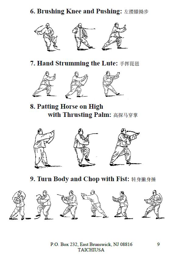 Super What is Tai Chi Chuan — TaiChiUSA IC48