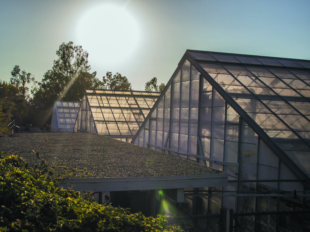 Greenhouses providing sustainability on the University Riverside Campus. Photo taken Aug. 5 by Michelle Caldera.