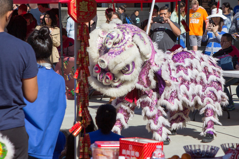 The white lion dances through the booths into the quad while students watch   on Wednesday, Feb. 1, 2017 . Photo by Christopher Santee.