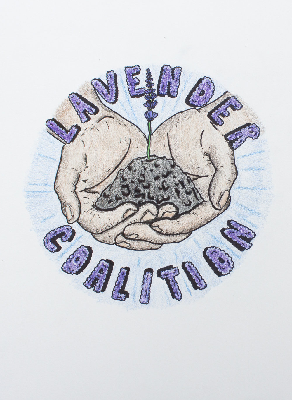 Lavender Coalition, colored pencil on paper.