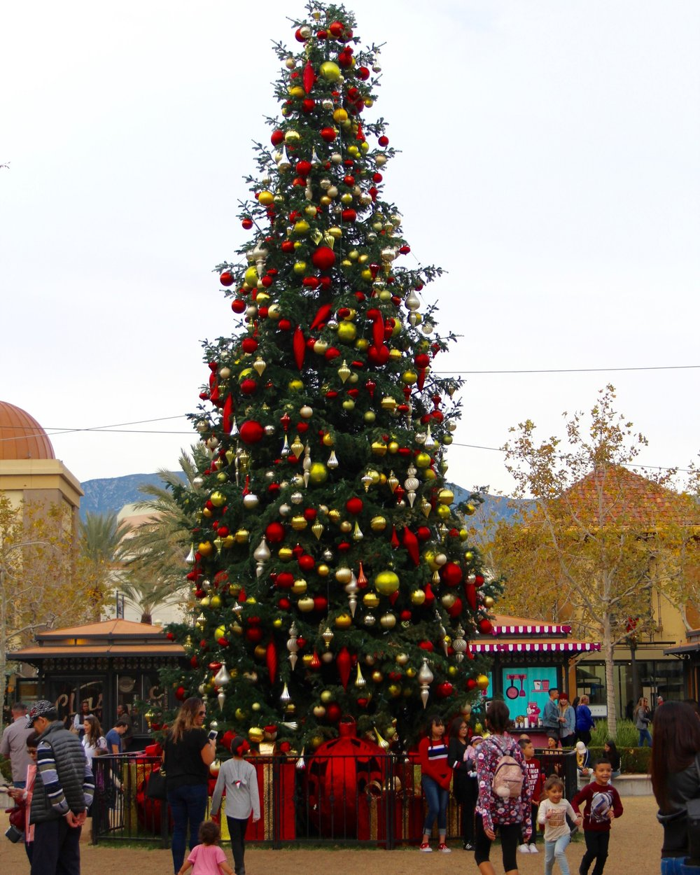 Shoppers surrounding the Christmas tree at Victoria Gardens. Photo by Paris Barraza