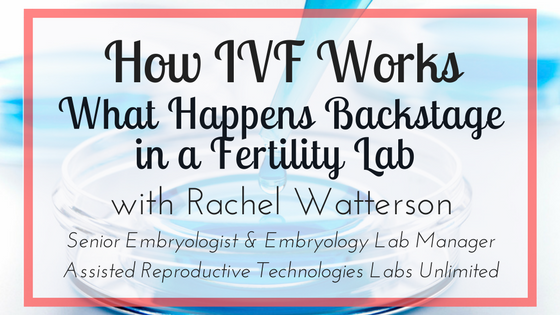 How IVF Works - What Happens Backstage in a Fertility Lab ...