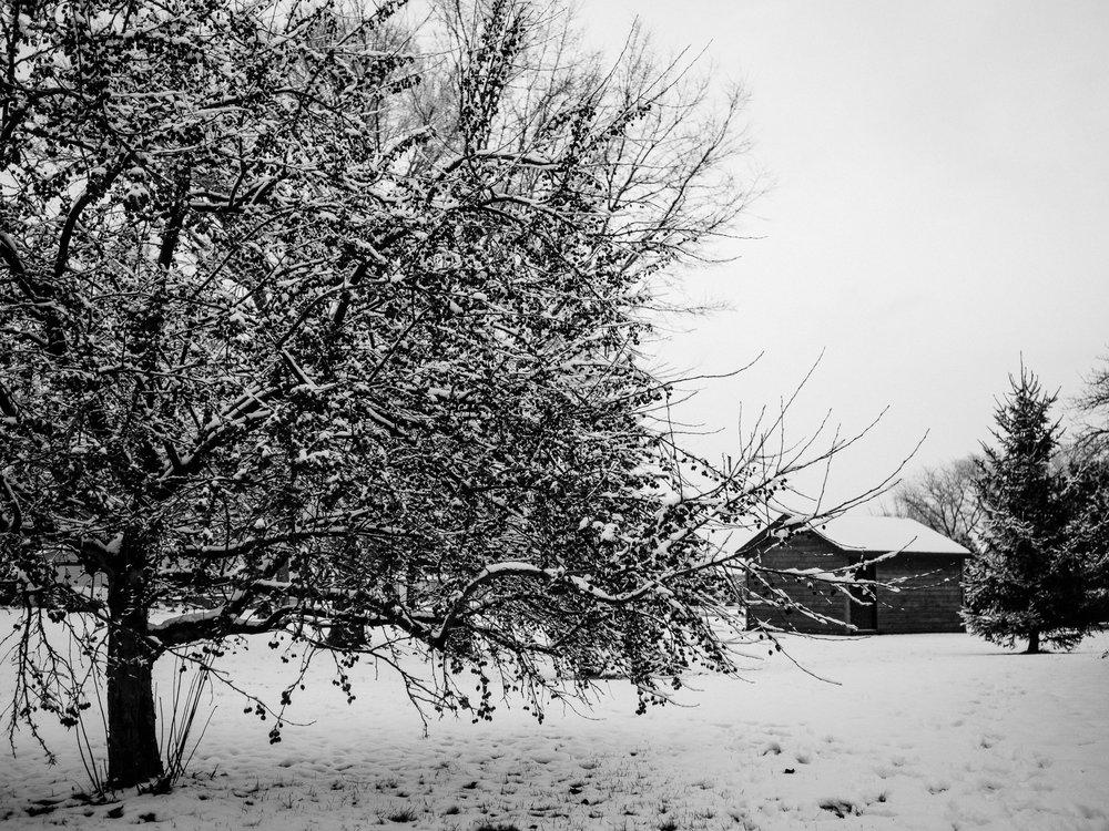A calm winter scene in Nebraska with a cabin in the background.