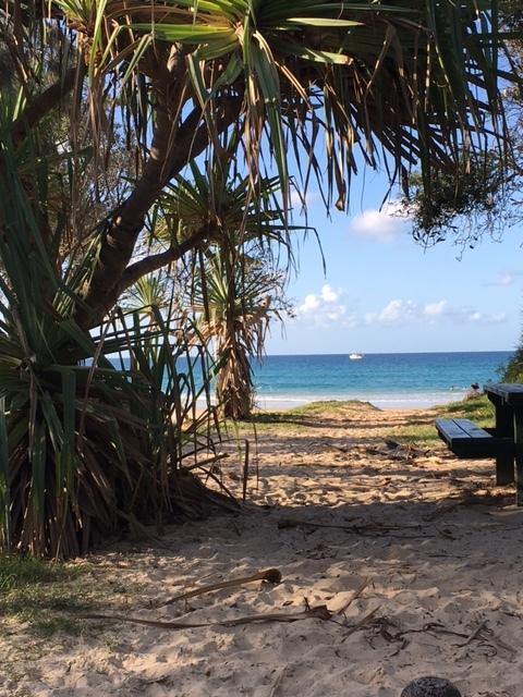 Sandy beach tracks lead you to pristine beaches