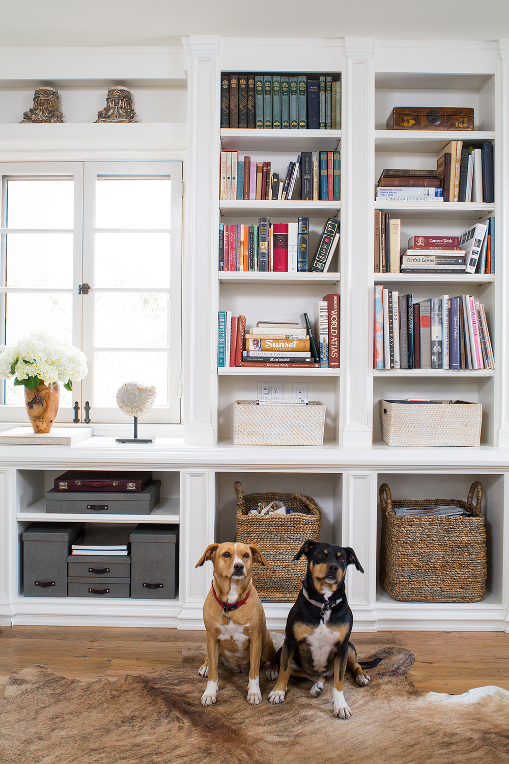 ContainerStore_HomeOffice_ShelfVerticalOveral_DogsV1_LR.jpg