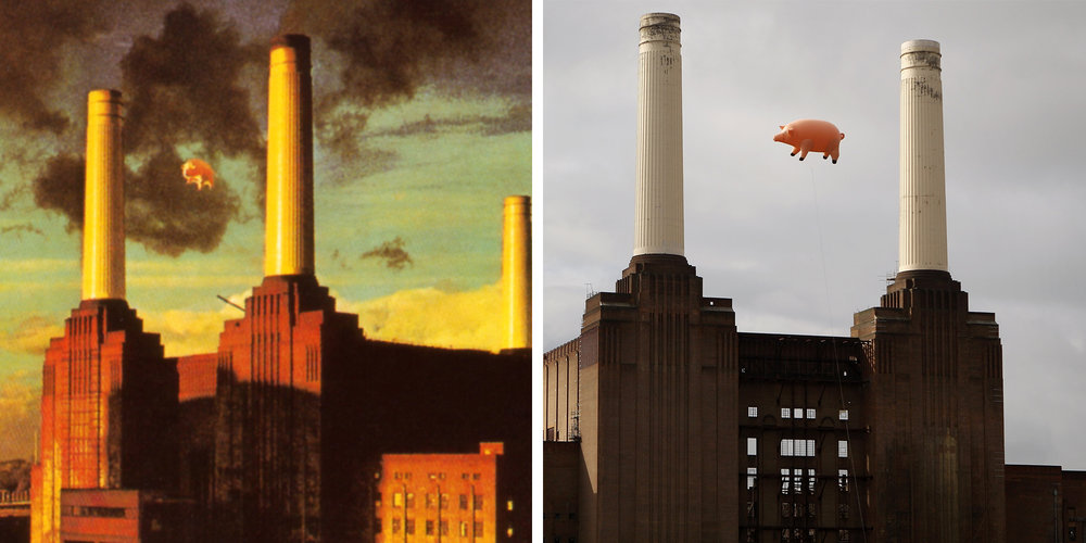 pink-floyd-animals-cover-pig-side-by-side.jpg