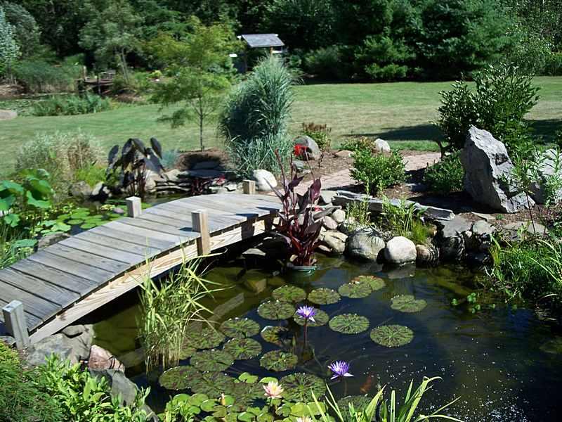 garden-pond-bridge-2.jpg