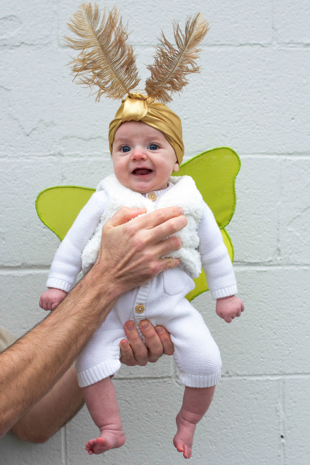 Baby Mother and Father Halloween Costume Luna Moth Entomologist Moon (3 of 12).jpg