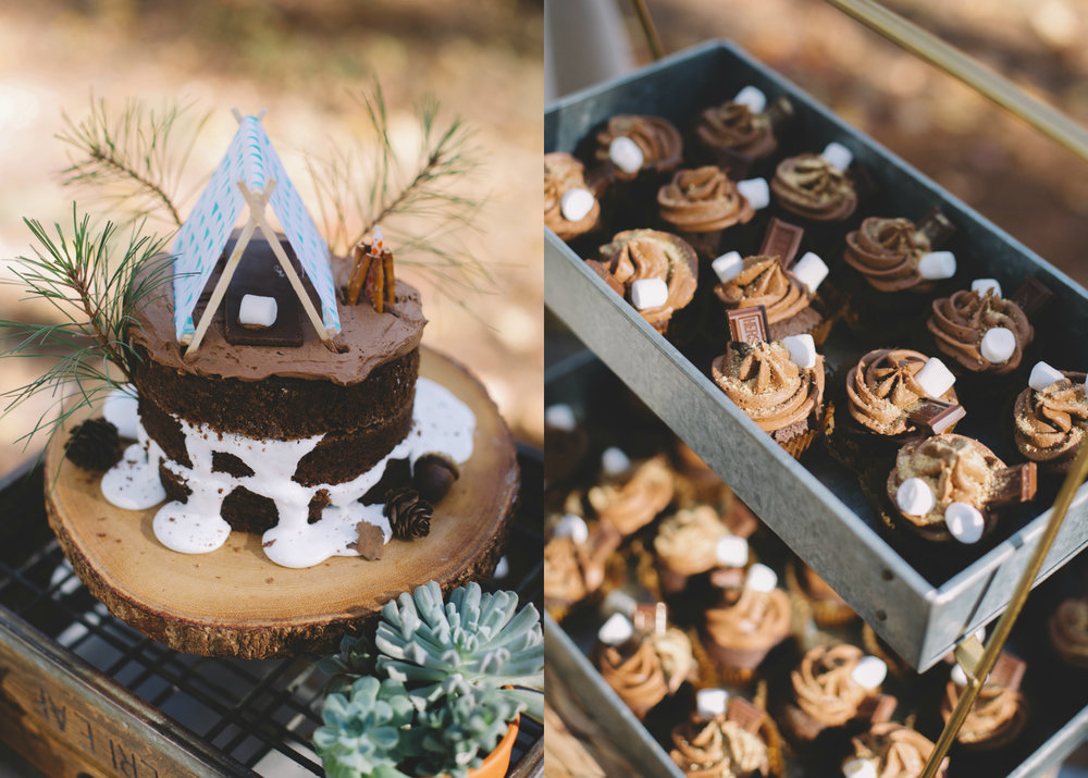 S'more Cake and Cupcakes.jpg
