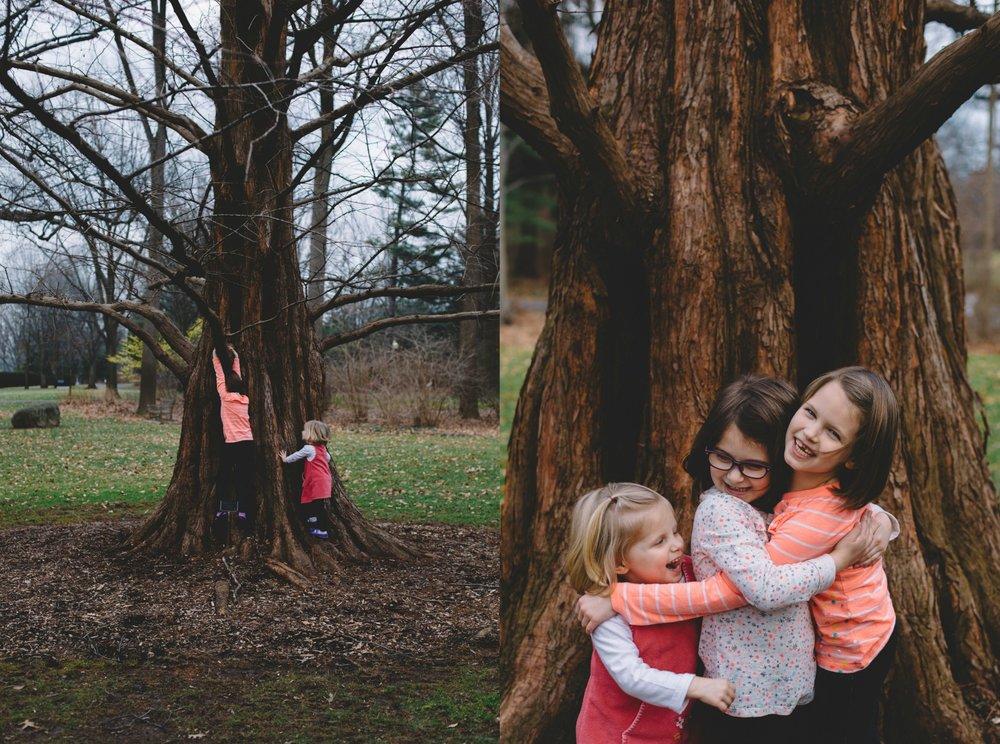 IMA Tree Climbing.jpeg
