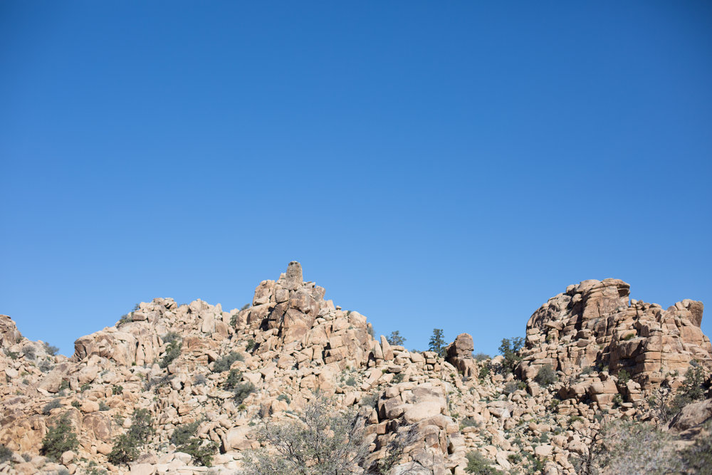 Joshua Tree National park Hike (5 of 19).jpg