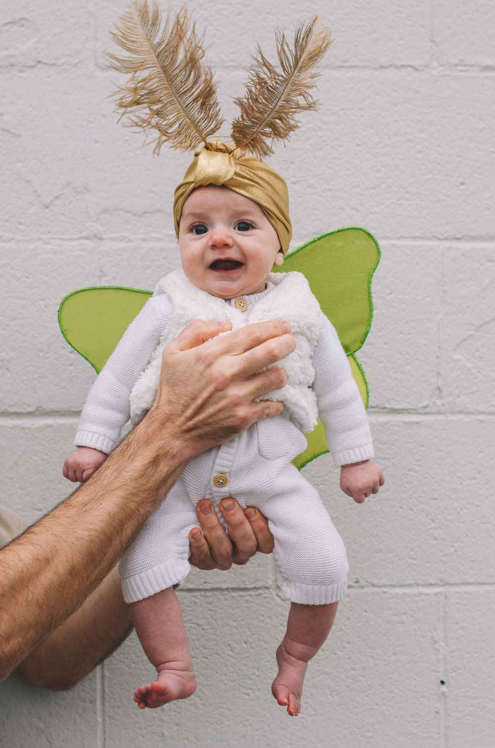 Halloween 2015 Lilias Luna Moth (8 of 23).jpg