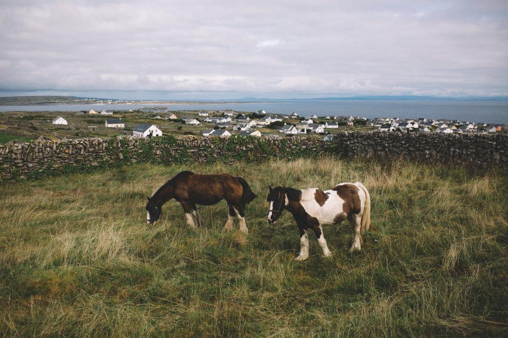 10 Tear Anniversary Trip - Aran Island Inis Mor Inis Orr Ireland  (41 of 73).jpg