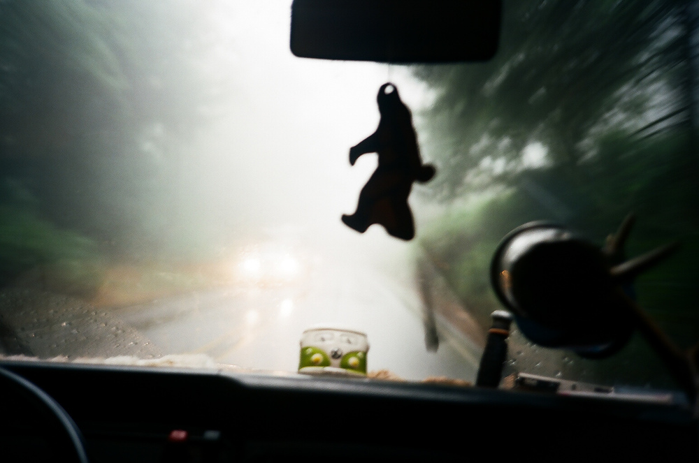 Big Foot spotting. Driving thru rain on the Oregon coast.