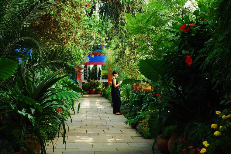 Botanical Gardens , 2015