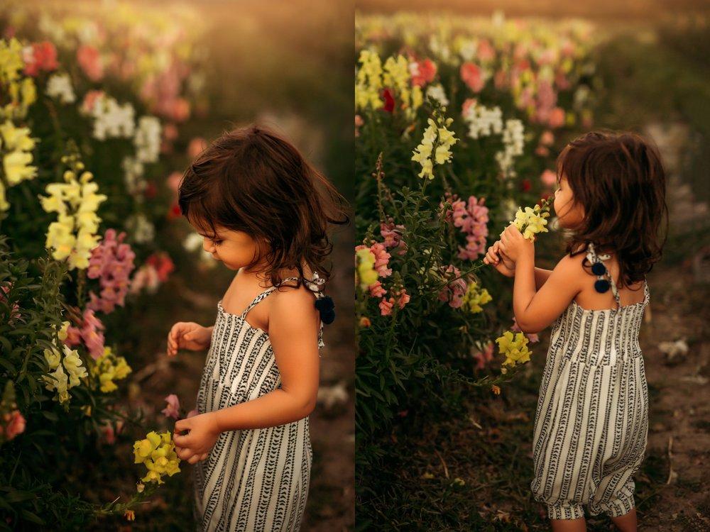Bay-Area-Sonoma-Napa-California-Destination-Florida-family-wedding-Photographer-6.jpg