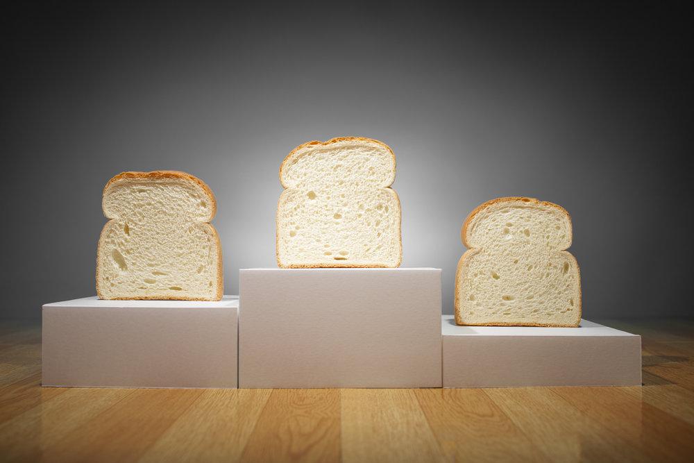 bread-winners-grey-bkgd.jpg